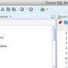gefixt: CPU Auslastung Oracle SQL Developer // Mac OS X